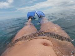 Solomons snorkel.JPG